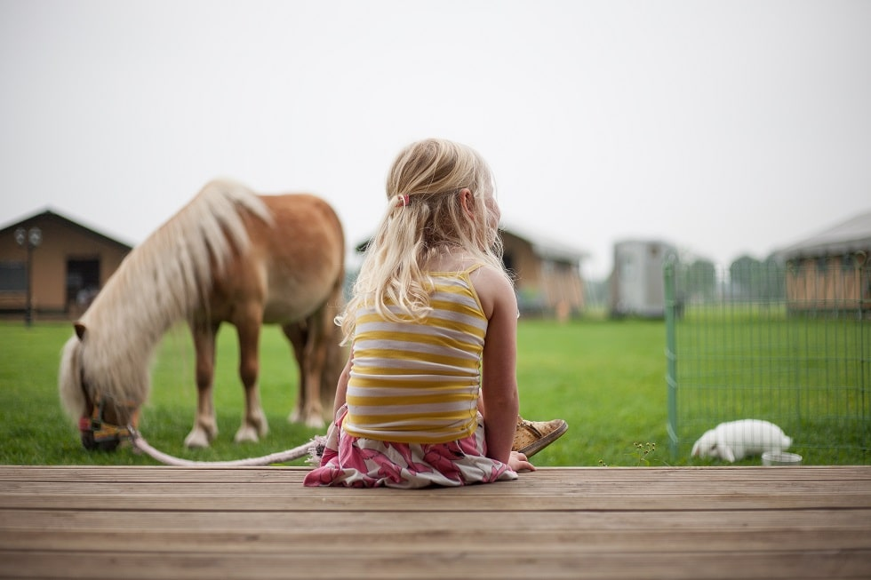 Girl with a horse at safari tents farm glamping
